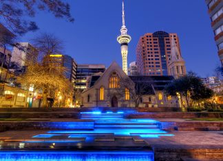 Chauffeur service in Auckland