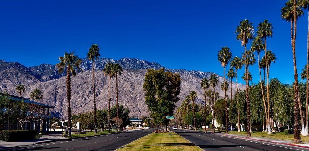 chauffeur service Palm Springs